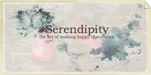 http://buckontech.blogspot.com/2012/11/social-media-and-power-of-serendipity.html