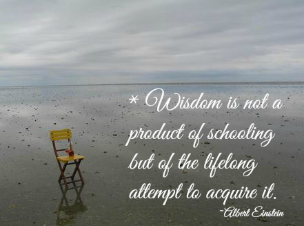 Wisdom By Einstein