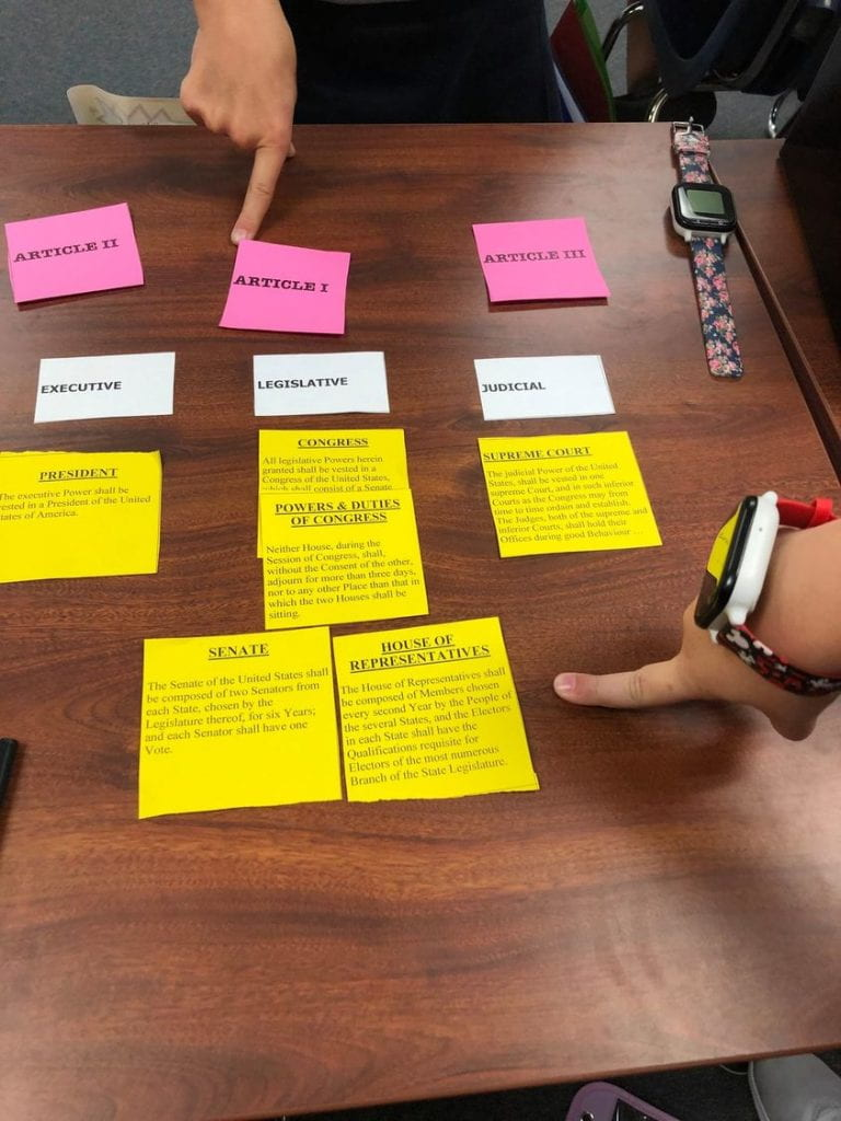 ConstitutionCategorizing Activity AWildman